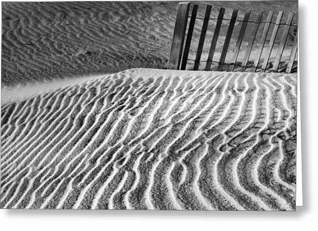 Dune Patterns Greeting Card by Steven Ainsworth