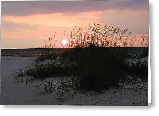 Sand Dunes Digital Greeting Cards - Dune Sunset Greeting Card by Bill Cannon