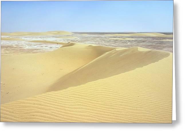 Dunes and sabkha Greeting Card by Paul Cowan