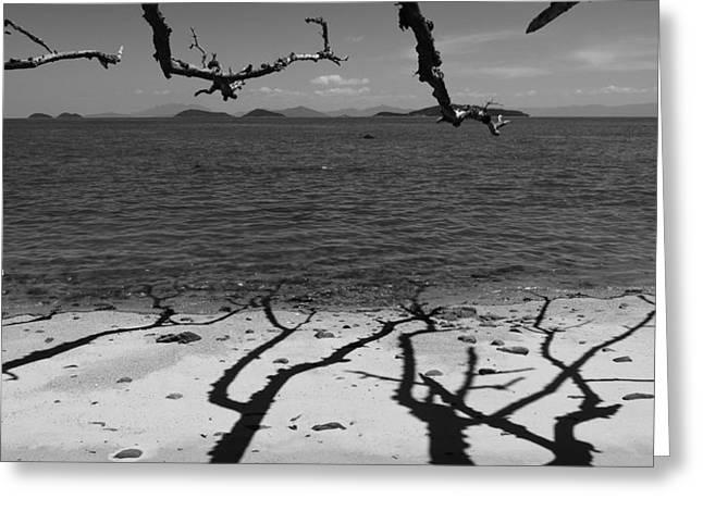 Dunk Island Australia 172 Greeting Card by Per Lidvall