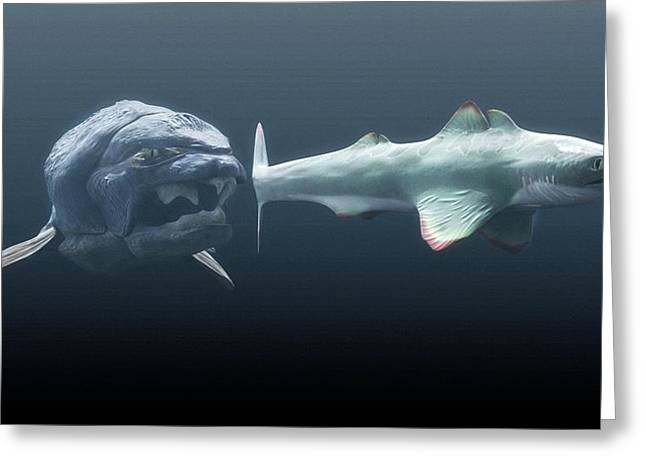 Shark Fossil Greeting Cards - Dunkleosteus Prehistoric Fish, Hunting Greeting Card by Christian Darkin