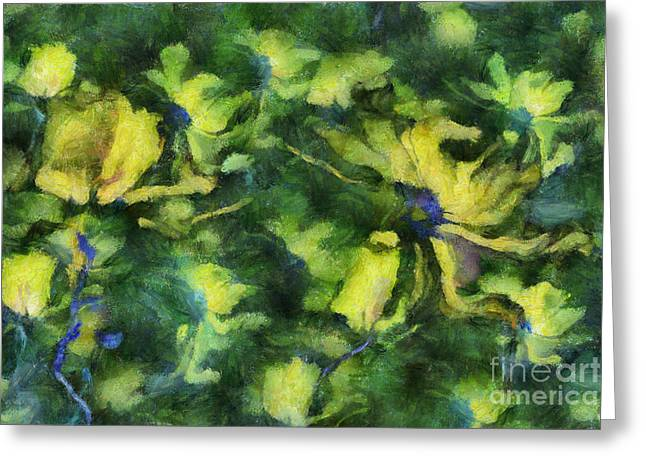 Duo Daisies - Bk01bdp01a Greeting Card by Variance Collections