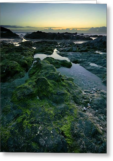 Heavenly Sunset Greeting Cards - Dusk by the ocean Greeting Card by Jaroslaw Grudzinski