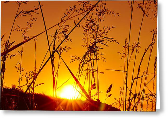 Black Top Greeting Cards - Dusk Pano Greeting Card by Svetlana Sewell