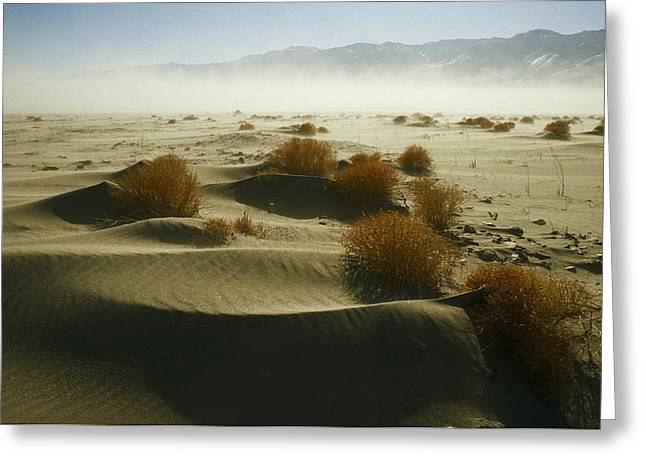 Dry Lake Greeting Cards - Dust Blows Off Owens Lake, Dry Greeting Card by Gordon Wiltsie