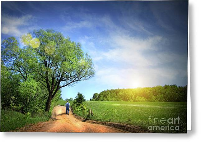 Alone Photographs Greeting Cards - Dusty road on a beautiful spring day Greeting Card by Sandra Cunningham