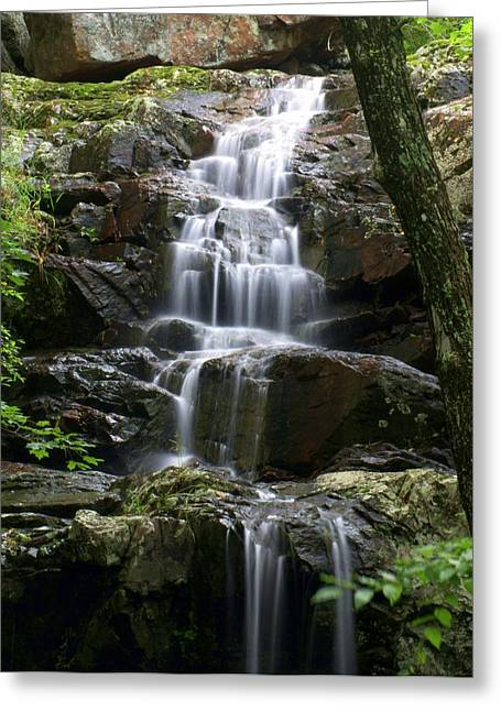 Marty Koch Greeting Cards - E Falls Greeting Card by Marty Koch