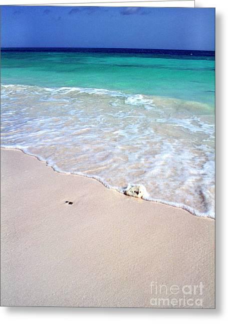 Seren Greeting Cards - Eagle Beach Greeting Card by Thomas R Fletcher