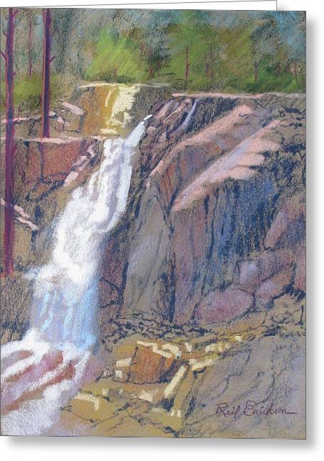 Eagles Pastels Greeting Cards - Eagle Falls Greeting Card by Reif Erickson