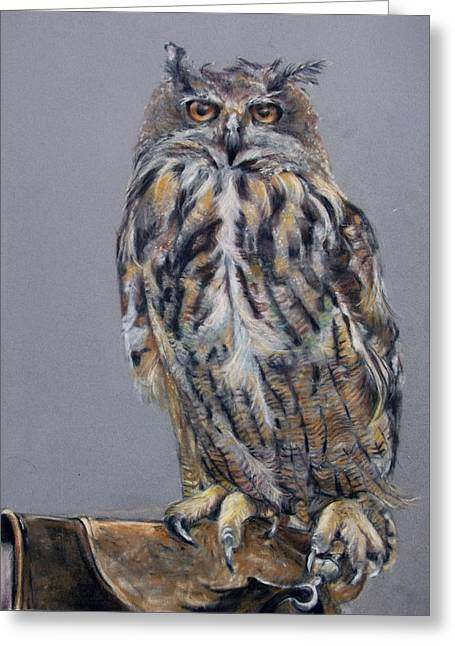 Eagles Pastels Greeting Cards - Eagle Owl Greeting Card by Tanya Patey