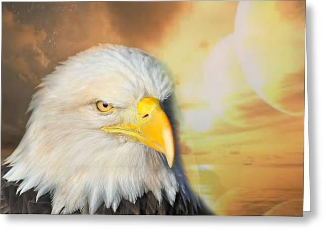 Eagle Sun Greeting Card by Marty Koch