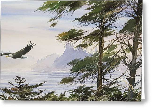 Shore Bird Print Greeting Cards - Eagles Shore Greeting Card by James Williamson