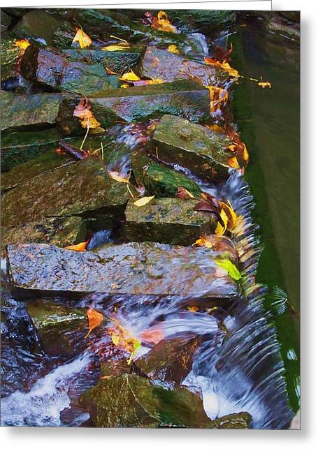 Early Autumn 2 Greeting Card by Todd Sherlock
