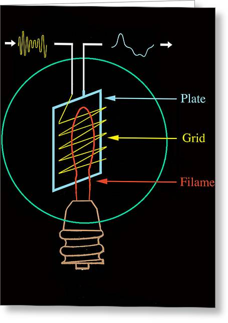 Amplifier Greeting Cards - Early Electronic Valve, Diagram Greeting Card by Sheila Terry