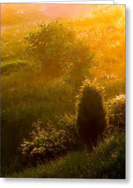 Gloaming Greeting Cards - Early Gloaming Greeting Card by Ron Jones