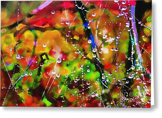Early Morning Dew Greeting Card by Judi Bagwell
