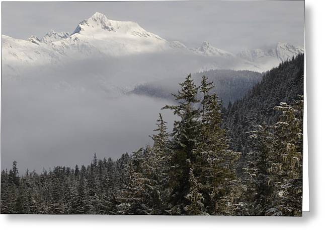 Tongass Greeting Cards - Early Morning Fog Covers Mount Juneau Greeting Card by Melissa Farlow