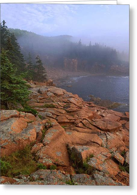 Acadia National; Park Greeting Cards - Early Morning Fog  Greeting Card by Stephen  Vecchiotti