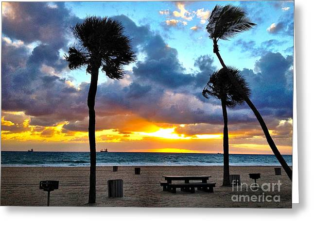 Orange Sky Greeting Cards - Early Morning on the Beach Greeting Card by Judee Stalmack