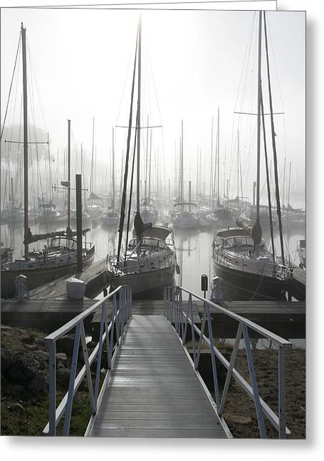 Sailboats Docked Photographs Greeting Cards - Early Morning on the Docks Greeting Card by Laurie With
