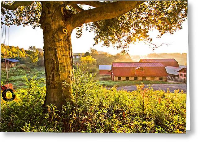 Fenceline Greeting Cards - Early Morning Swing Greeting Card by Debra and Dave Vanderlaan