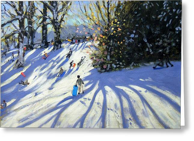 Early snow Darley Park Greeting Card by Andrew Macara