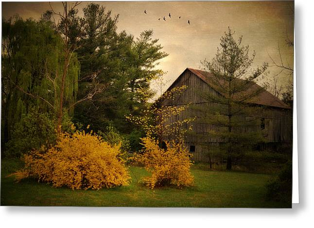 Barn Yard Photographs Greeting Cards - Early Spring Greeting Card by Kathy Jennings