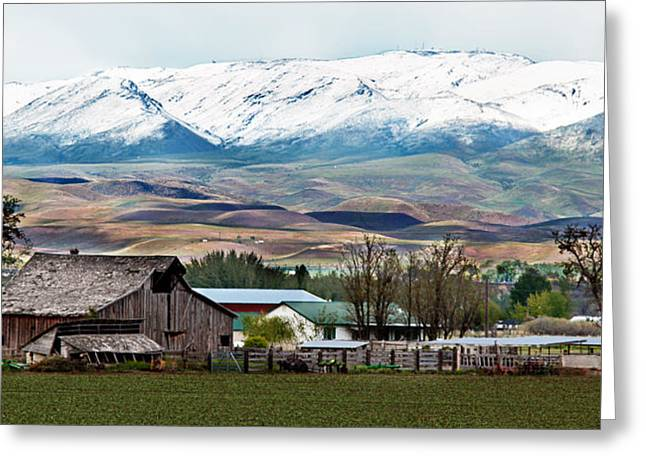 Scenic Idaho Greeting Cards - Early Spring Greeting Card by Robert Bales