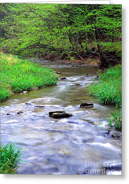 Rushing Stream Greeting Cards - Early spring Rushing Stream Greeting Card by Thomas R Fletcher
