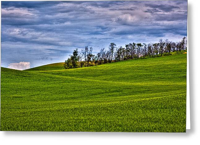 Lanscape Greeting Cards - Early Summer in the Palouse Greeting Card by David Patterson
