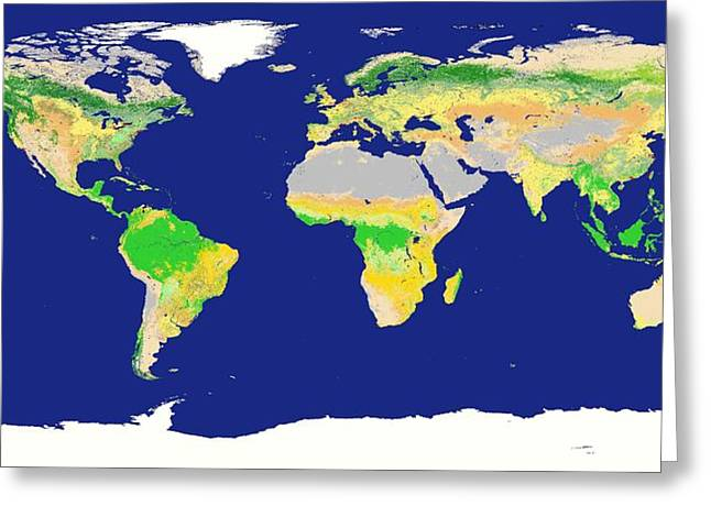 Desertification Greeting Cards - Earths Land Cover Classification, 2003 Greeting Card by Kevin Ward, Nasa Earth Observationsnasa