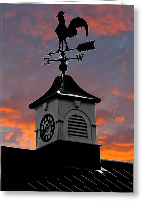 Weathervane Greeting Cards - East by South Greeting Card by Brian Roscorla