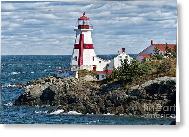 Picturesque Greeting Cards - East Quoddy Lighthouse Greeting Card by John Greim