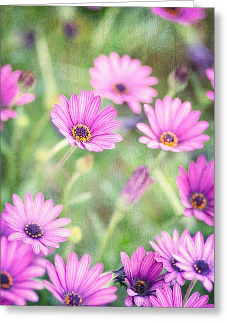 Textured Floral Greeting Cards - Easter Basket Greeting Card by Joel Olives