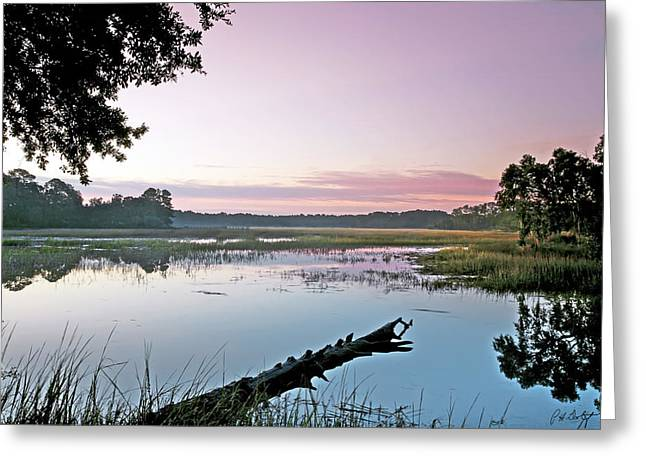 South Carolina Greeting Cards - Eastern Morning Greeting Card by Phill  Doherty