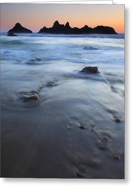 Seal Greeting Cards - Ebb Stones Greeting Card by Mike  Dawson