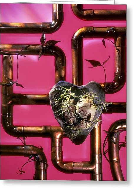 Industrial Concept Greeting Cards - Ecological Heart, Conceptual Image Greeting Card by Paul Biddle