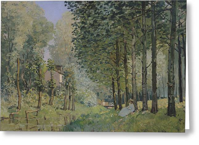 Woman Of The Forest Greeting Cards - Edge of the Wood Greeting Card by Alfred Sisley