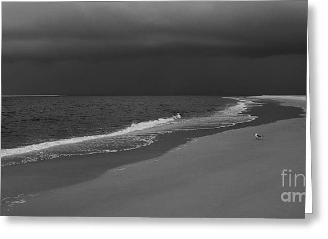 Storm Prints Greeting Cards - Edge of the World Greeting Card by Dan Carmichael