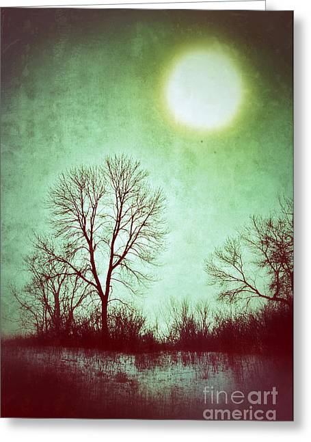 Rural Snow Scenes Photographs Greeting Cards - Eerie Landscape Greeting Card by Jill Battaglia