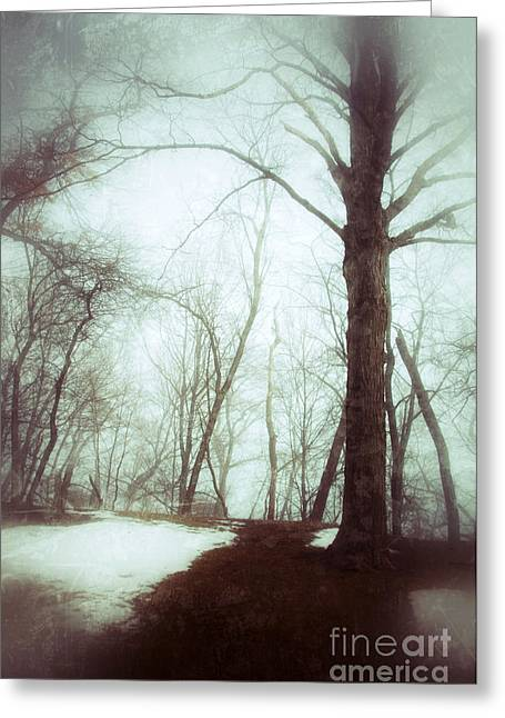 Winter Scenes Rural Scenes Greeting Cards - Eerie Winter Woods Greeting Card by Jill Battaglia