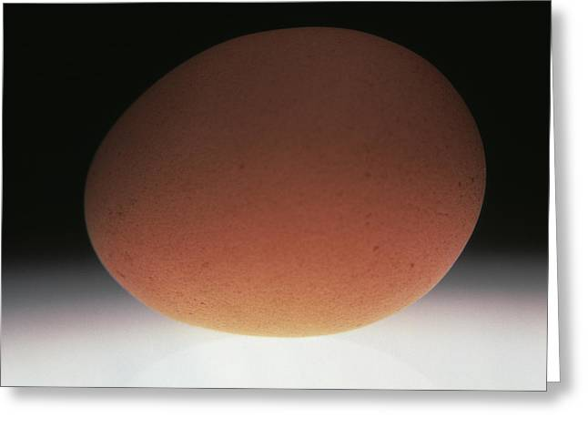 Egg Greeting Card by Victor De Schwanberg