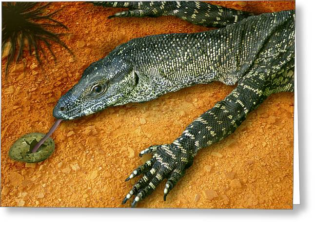 Goanna Greeting Cards - Eggs for Breakfast Greeting Card by Holly Kempe