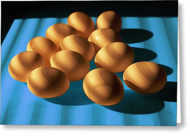 Dozen Greeting Cards - Eggs on Blue lit through Venetian Blinds Greeting Card by Randall Nyhof