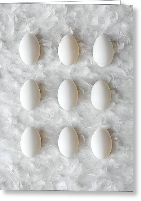 Cushion Greeting Cards - Eggs On Feathers, Conceptual Image Greeting Card by Paul Biddle
