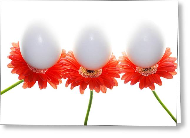 Floating Flowers Greeting Cards - Eggsactly Balanced Greeting Card by Rebecca Cozart