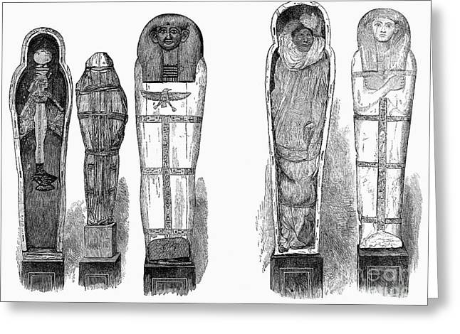 Hathor Greeting Cards - Egypt: Royal Mummies, 1882 Greeting Card by Granger