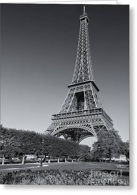 Champs Greeting Cards - Eiffel Tower in Spring III Greeting Card by Clarence Holmes