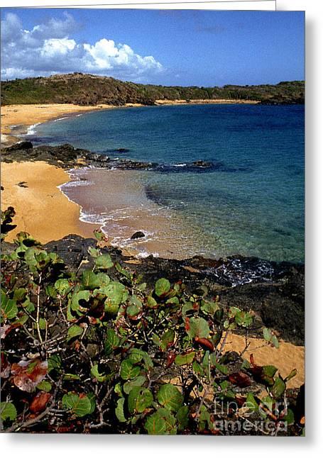 Puerto Rico Greeting Cards - El Convento Beach Greeting Card by Thomas R Fletcher