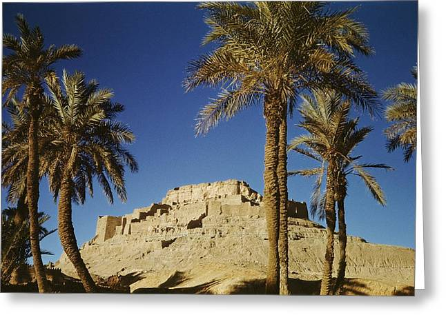 Ruins And Remains Greeting Cards - El Golea, The Old Ksar Greeting Card by Maynard Owen Williams